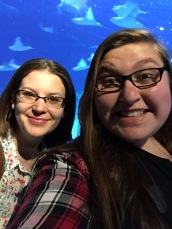 Selfies with sharks and sting rays.